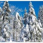 Winter Europa Deutschland