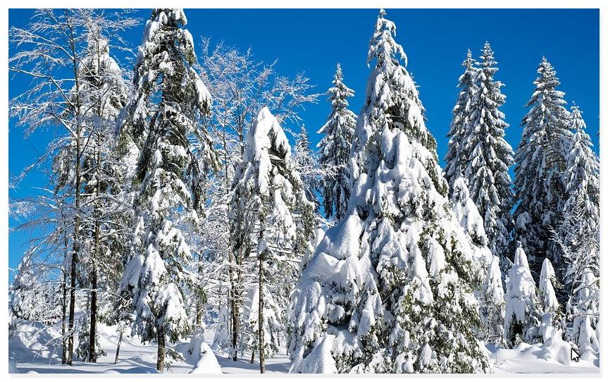 Scheibenkratzen und Schneeräumen sind die größten Spaßbremsen im Winter